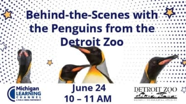 Detroit Zoo Penguins event with Michigan Learning Channel